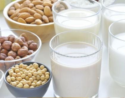 Tipos de leches vegetales: ¿cuál elegir?